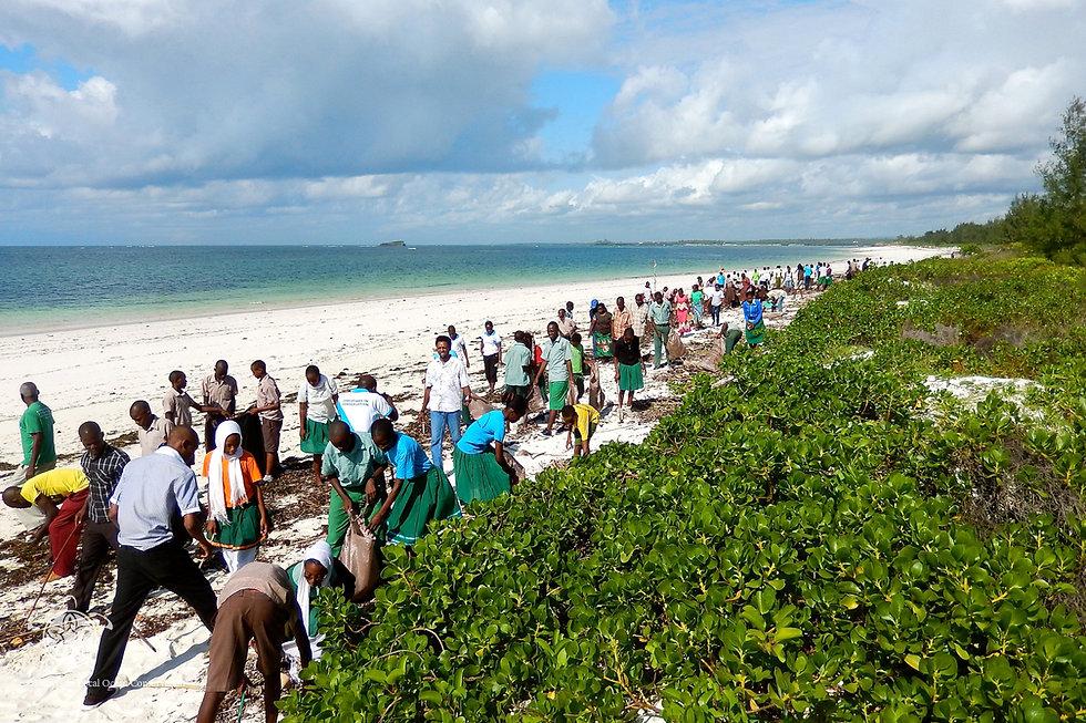 beachclean.jpg