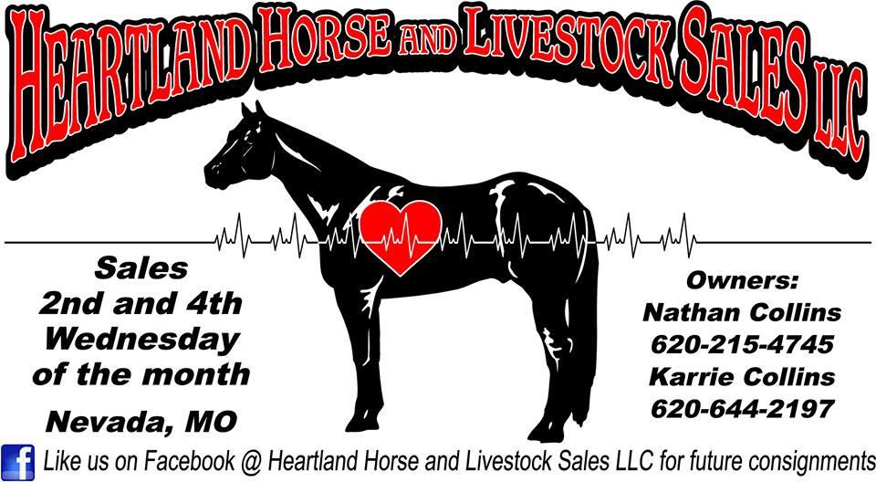 Horse Auction Heartlandhorseandlivestocksales Com United States