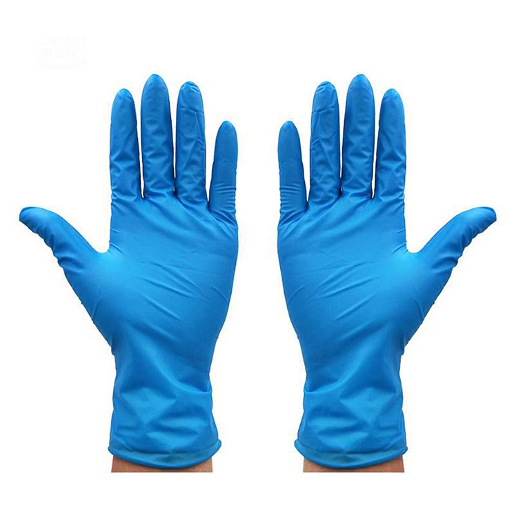 8 - Nitrile Gloves The Gloves.jpeg