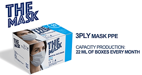 3 ply mask.png