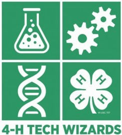 4-H-TechWizards-GraphicID_2014.jpg