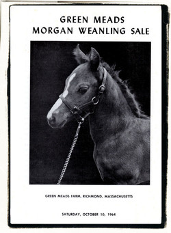GMF Weanling Sale sm