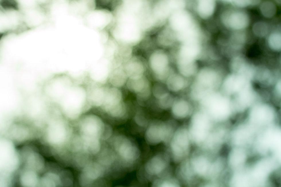 Green abstract.jpg