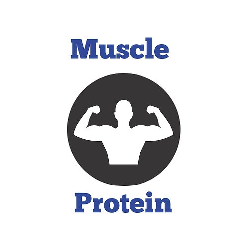 MuscleProtein.com