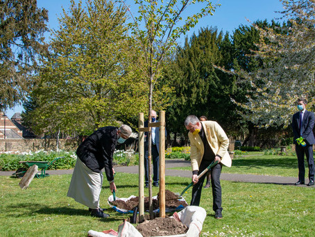 Mayor of Lewisham plants blossom tree for Lewisham residents who have lost their lives to Covid-19