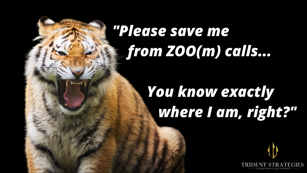 Tigers are sick of ZOO(m) calls.