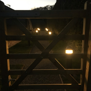 Pods by night (3).JPG
