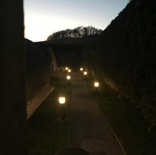 Pods by night (2).JPG