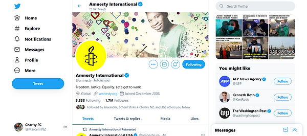 Screenshot_2021-01-21 Amnesty Internatio