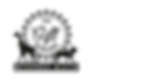 tgs_thegiftscholars_logo_sports_zappico.
