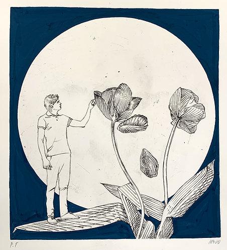 """The Last Moon"""