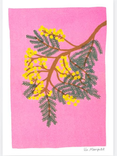 Risographie Mimosa de Léa Maupetit