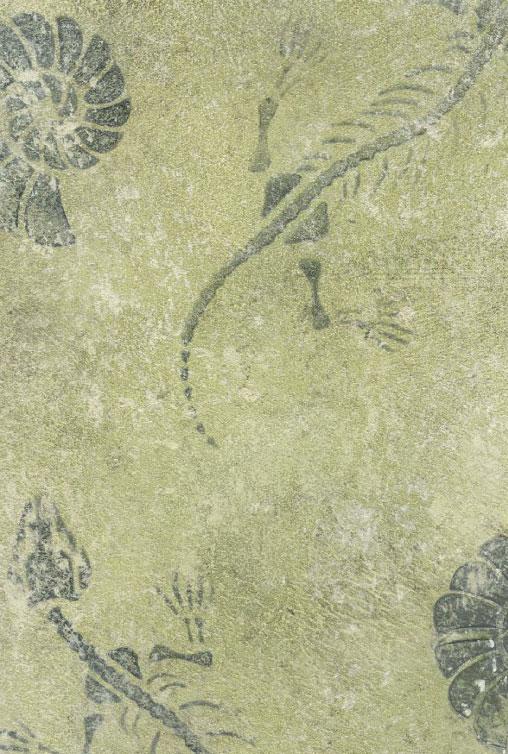 Hidden Fossils - Stencil Plaster