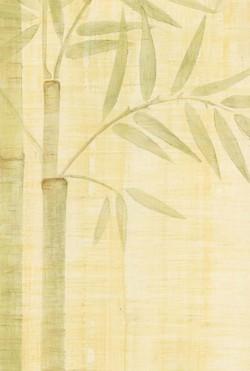 Zen Bamboo - Venetian Plaster