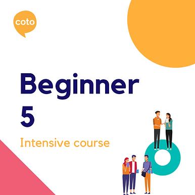 Beginner 5 - Intensive Course Materials (2020)