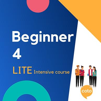 Lite Intensive: Beginner 4 material