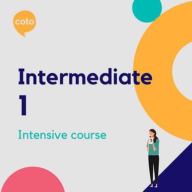 Intermediate 1 - Intensive Course Materials