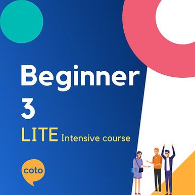 Lite Intensive: Beginner 3 material