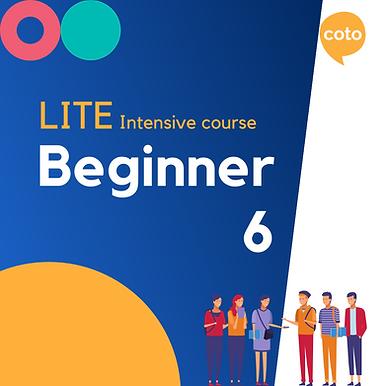 Lite Intensive: Beginner 6 material