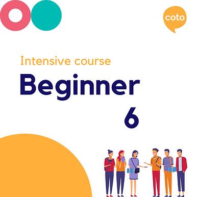 Beginner 6 - Intensive Course Materials (2020)