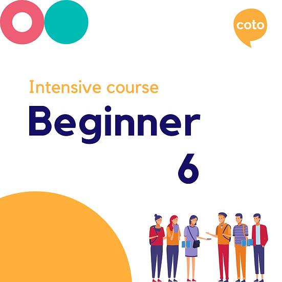 Beginner 6 - Intensive Course Materials (2020)