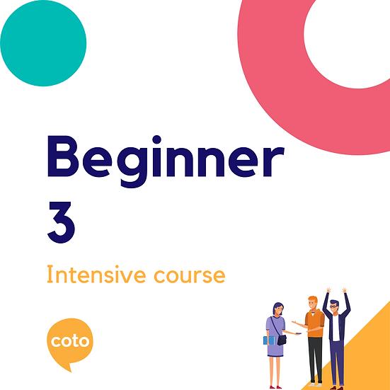 Beginner 3 - Intensive Course Materials (2020)