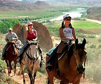 other_horseback.jpg