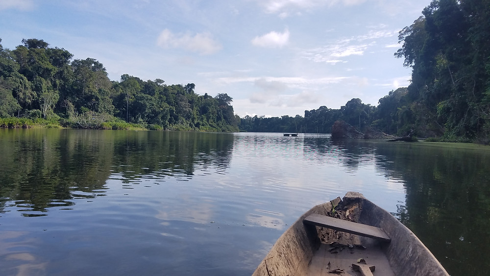 A view of Cocha Cashu from the canoe. I was enjoying a bit of time on the water before heading off to conduct fieldwork on the river.