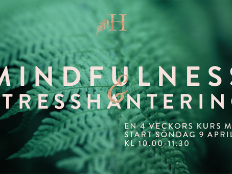 Mindfulness & stresshanterings⎜kurs April
