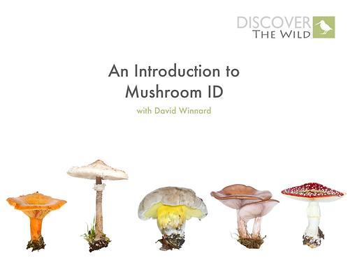 E-Course - Introduction to Mushroom ID