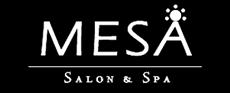 logo_mesa.png