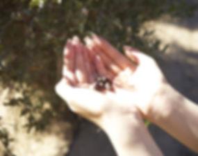 hand03_1.jpg