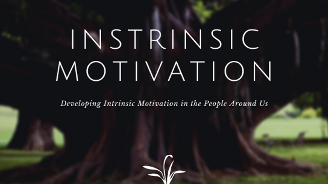 Creating Intrinsic Motivation in People!