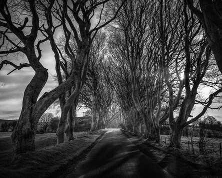 Dark Edges - Irlande