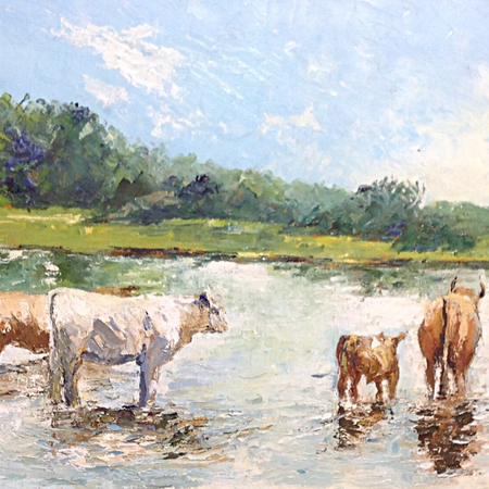 Cattle in the River