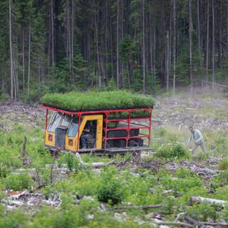 One Tree Planted-68.jpg
