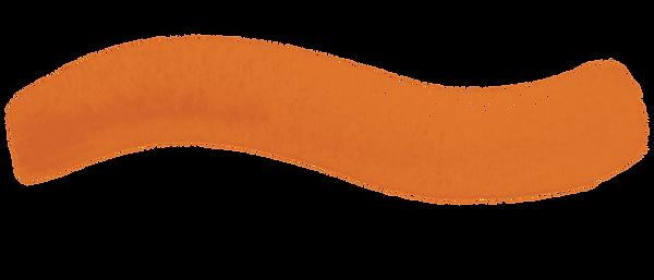 OrangeSquiggle.png