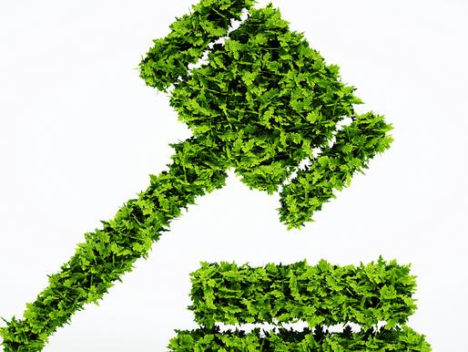 ¿Sabes que es el Derecho Ambiental?