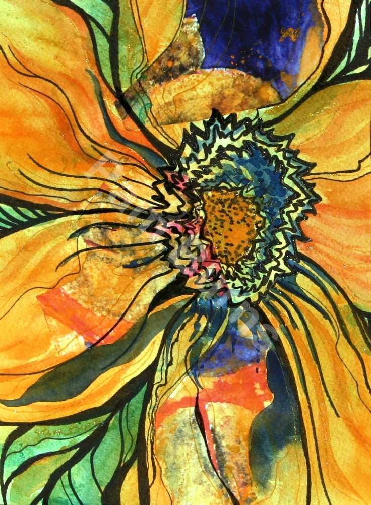Coreopsis Collage