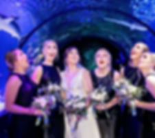 bridal party in tunnel whimsy.jpg