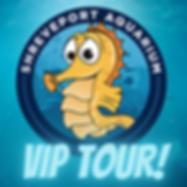 VIP TOUR.png