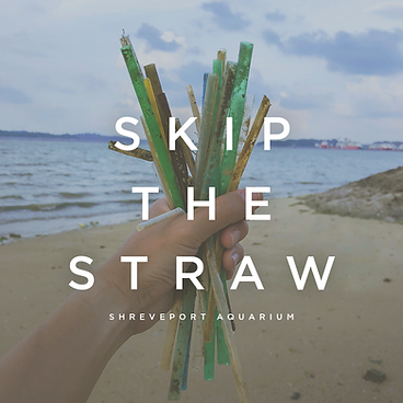 Skip thee straw.png