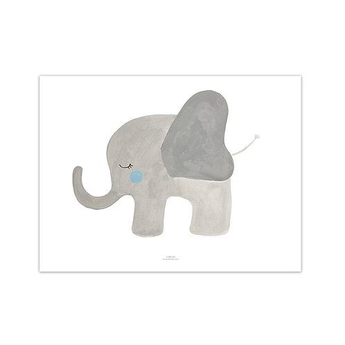 Lámina Elefante - Más colores