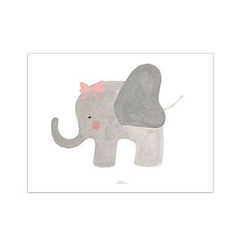 Lámina Elefanta