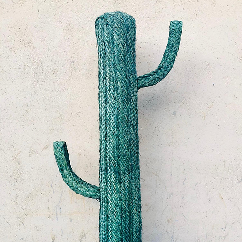 Cactus verde