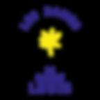 DSL_logo_50x50.png