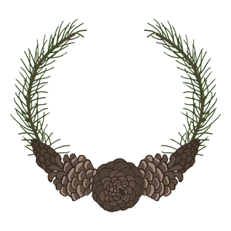 Pine Spruce Branches 2