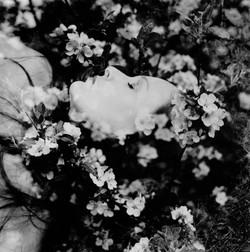 Eau De Fleure De Cerisier
