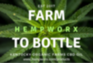 Farm to Bottle HempWorx Products.png
