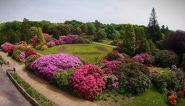 Gardens%25202_edited_edited.jpg